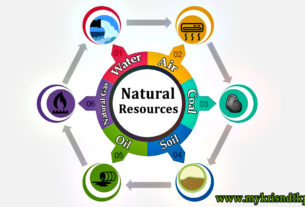 Common natural resources list