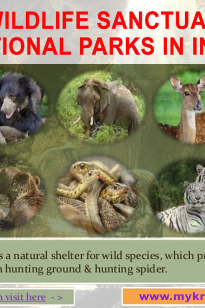LIST OF WILDLIFE SANCTUARIES AND NATIONAL PARKS IN INDIA